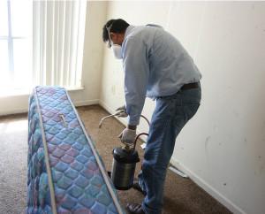 Самостоятельная обработка квартиры