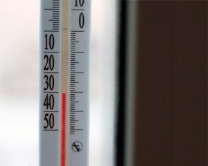 Клопы боятся перепадов температуры