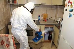 Санобработка от тараканов