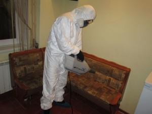 Обработка дома сотрудником СЭС от муравьев