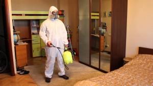 Уничтожение блох в квартире