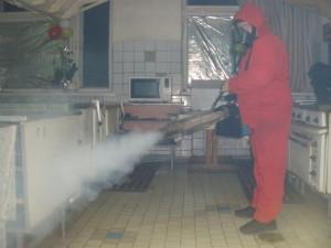 Проведение дезинсекции СЭС от тараканов