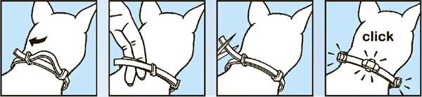 Как одевать ошейник от блох Килтикс