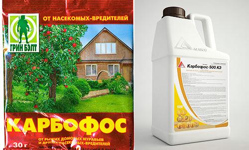 мужское купить карбофос в жидком виде в красноярске основные признаки